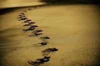 Auf spiritueller Reise…